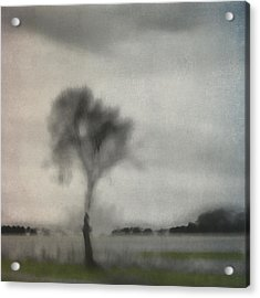 Through A Train Window Number 2 Acrylic Print by Carol Leigh