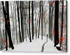 Through Autumn And Winter Acrylic Print