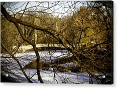 Through The Branches 2 - Central Park - Nyc Acrylic Print by Madeline Ellis