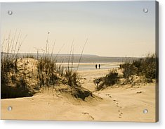 Through The Dunes Acrylic Print by Barbara Northrup