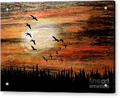 Through The Haze Acrylic Print by R Kyllo