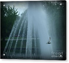 Through The Mist Acrylic Print by Christy Beal