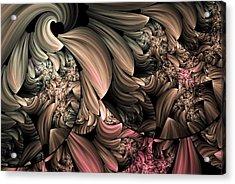 Through The Photographers Lens Abstract Acrylic Print