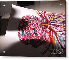 Through The Shadows Acrylic Print by Thommy McCorkle