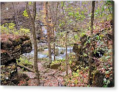 Through The Trees At Greer Spring Acrylic Print by Marty Koch
