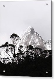 Through The Trees Come Mountains Acrylic Print by Lee Stickels