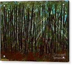 Through The Trees Acrylic Print by Hillary Binder-Klein