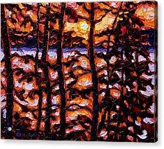 Through The Trees Acrylic Print by Rob MacArthur