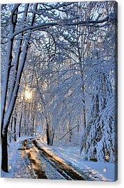 Through The Woods Acrylic Print by Kristin Elmquist