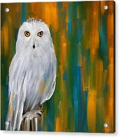 Through Your Eyes Acrylic Print by Lourry Legarde