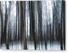 Acrylic Print featuring the photograph Through The Woods by Steven Huszar