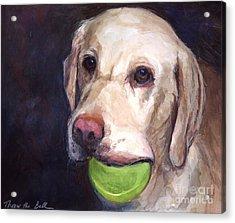 Throw The Ball Acrylic Print by Molly Poole