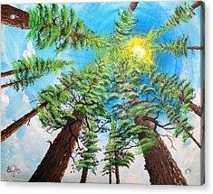 Thru The Pines Acrylic Print by Jim Bowers