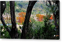 Thru The Trees Acrylic Print by David  Norman