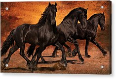 Thundering Hooves Acrylic Print by Jean Hildebrant