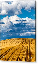Thunderstorm Pennington County Sd Acrylic Print by Troy Montemayor