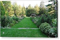 Thuya Gardens In Northeast Harbor Maine Acrylic Print