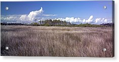 Acrylic Print featuring the photograph Tidal Marsh On Roanoke Island by Greg Reed