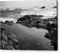 Tide Pool Acrylic Print