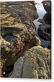 Tide Pools - 02 Acrylic Print by Gregory Dyer