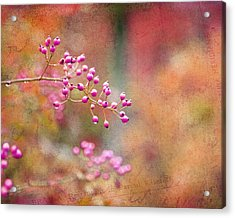 Tie Dyed Berries In Pink Orange And Gold  Acrylic Print