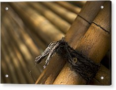 Tied Together Acrylic Print by Lindsey Weimer