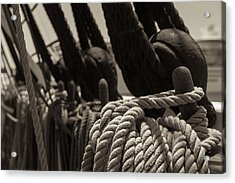 Tied Up Black And White Sepia Acrylic Print