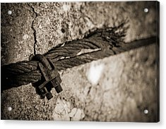 Acrylic Print featuring the photograph Ties That Bind by Amber Kresge
