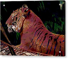 Acrylic Print featuring the painting Tiger 2 by David Mckinney