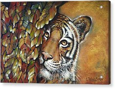 Tiger 300711 Acrylic Print
