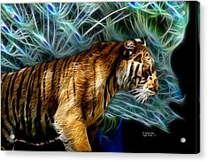 Tiger 3921 - F Acrylic Print by James Ahn