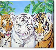 Acrylic Print featuring the painting Tiger Cubs by Thomas J Herring