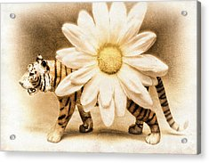 Tiger Dream Acrylic Print by Jeff  Gettis