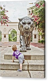 Tiger Dreams Acrylic Print by Scott Pellegrin