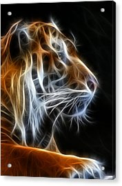 Tiger Fractal 2 Acrylic Print by Shane Bechler