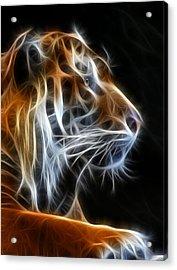 Tiger Fractal 2 Acrylic Print