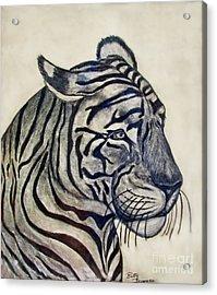 Tiger II Acrylic Print by Debbie Portwood