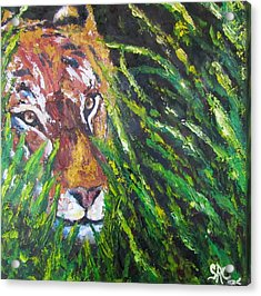 Tiger In The Grass  Acrylic Print