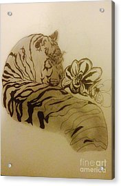 Tiger In The Shade Acrylic Print
