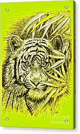 Tiger - King Of The Jungle Acrylic Print
