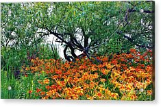 Tiger Lillies At The Pond Acrylic Print by Judy Via-Wolff
