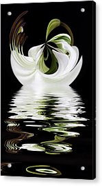Tiger Lily Reflected Acrylic Print by Cyndy Doty