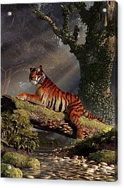 Tiger On A Log Acrylic Print by Daniel Eskridge