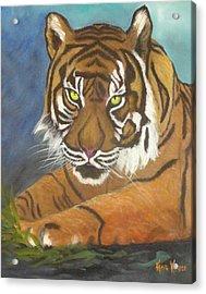Tiger One Acrylic Print by  Kathie Kasper