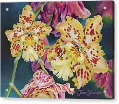 Acrylic Print featuring the painting Tiger Orchid by Jane Girardot