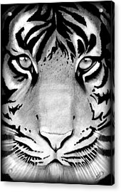 Tiger Acrylic Print by Saki Art