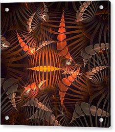 Tiger Shrimp Acrylic Print by Anastasiya Malakhova