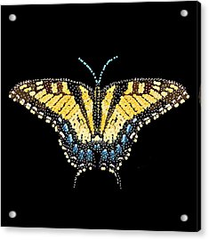 Tiger Swallowtail Butterfly Bedazzled Acrylic Print