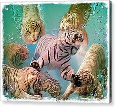 Tiger Tank Acrylic Print