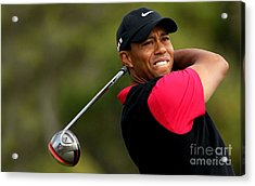 Tiger Woods Golf Acrylic Print by Lanjee Chee